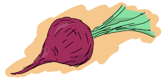 a beet
