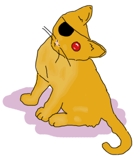 a cat with an eye patch